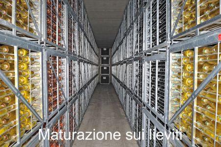 Cantina-Chiara-Ziliani-Gallery-11