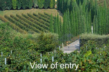 Winery-Chiara-Ziliani-Gallery-02