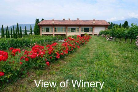 Winery-Chiara-Ziliani-Gallery-05