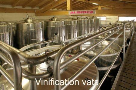 Winery-Chiara-Ziliani-Gallery-11